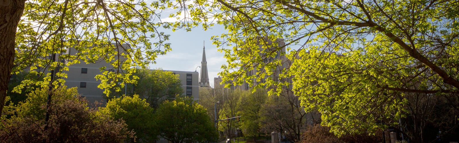 On Campus College of Professional Studies Creighton